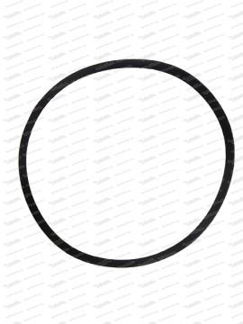 O-Ring 101,2x3,5mm