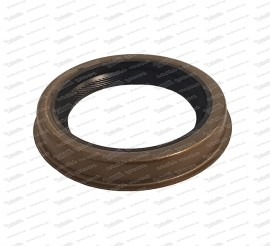 Shaft seal for engine front (timing chain side)